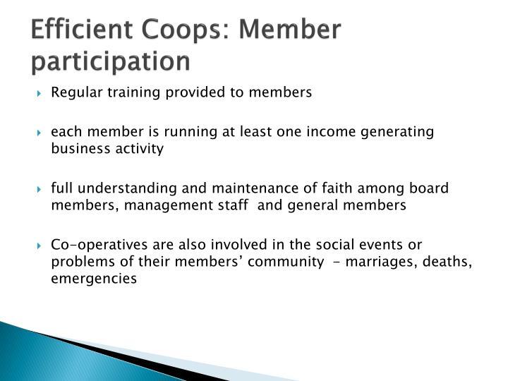 Efficient Coops: Member participation
