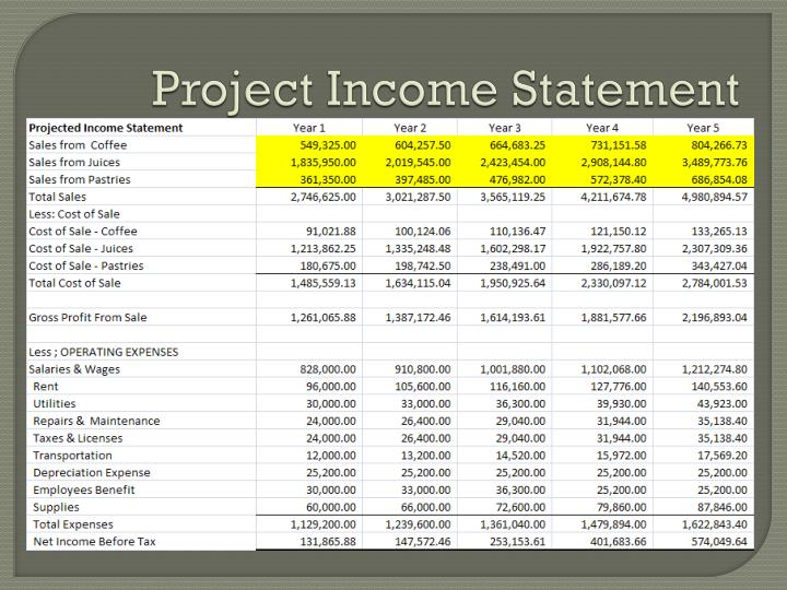Project Income Statement