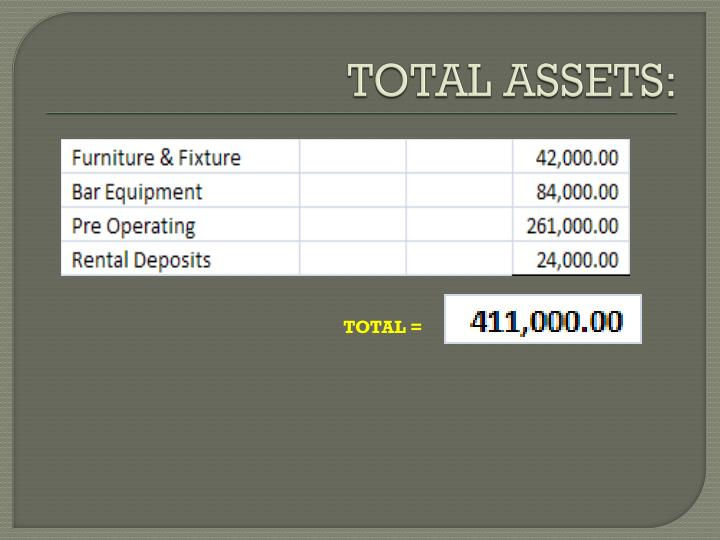 TOTAL ASSETS: