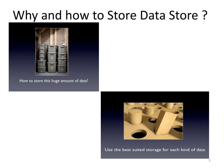 Why and how to Store Data Store ?