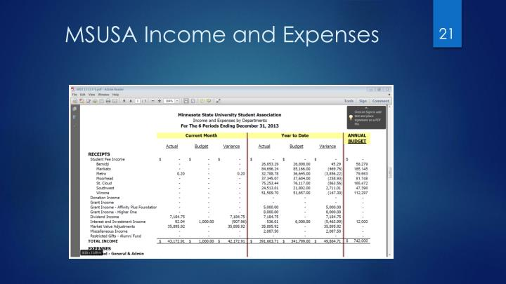MSUSA Income and Expenses