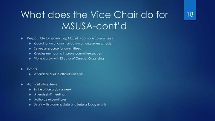 What does the Vice Chair do for MSUSA-cont'd