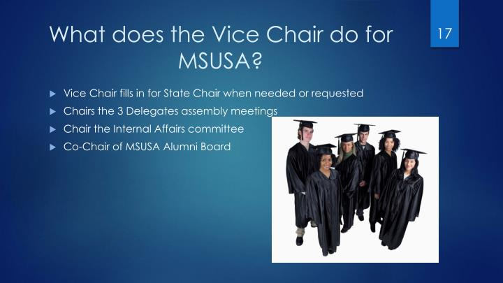 What does the Vice Chair do for MSUSA?