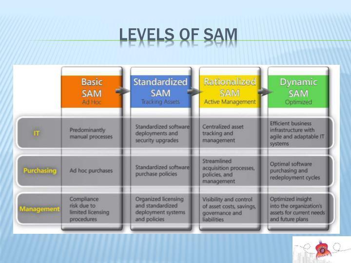 Levels of SAM