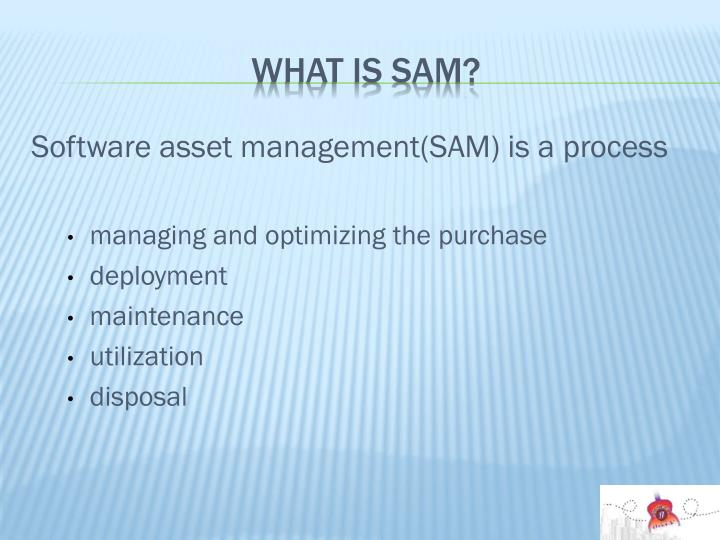 What is SAM?