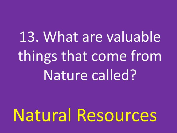 13. What are valuable things that come from Nature called?