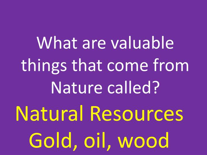 What are valuable things that come from Nature called?