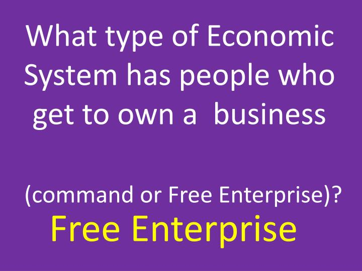 What type of Economic System has people who get to own a  business