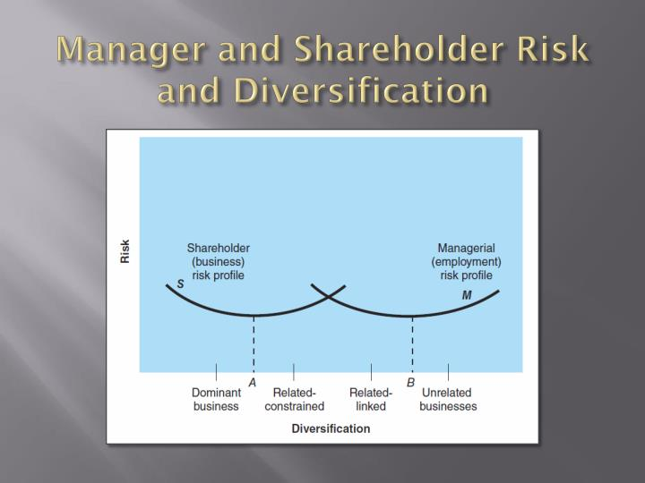 Manager and Shareholder Risk and Diversification