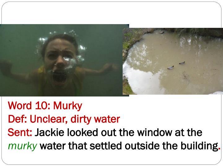 Word 10: Murky