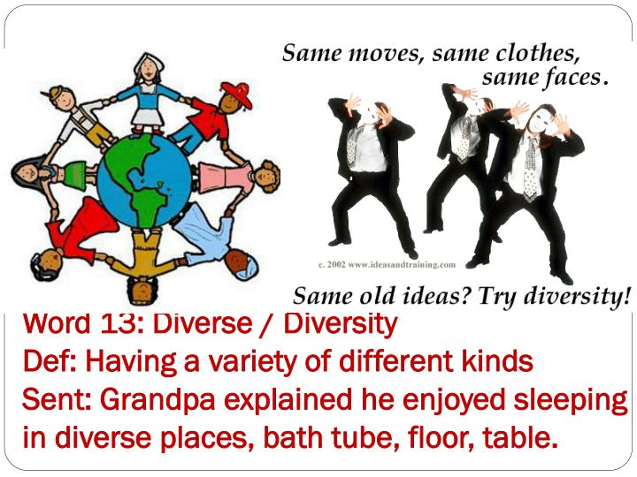 Word 13: Diverse / Diversity