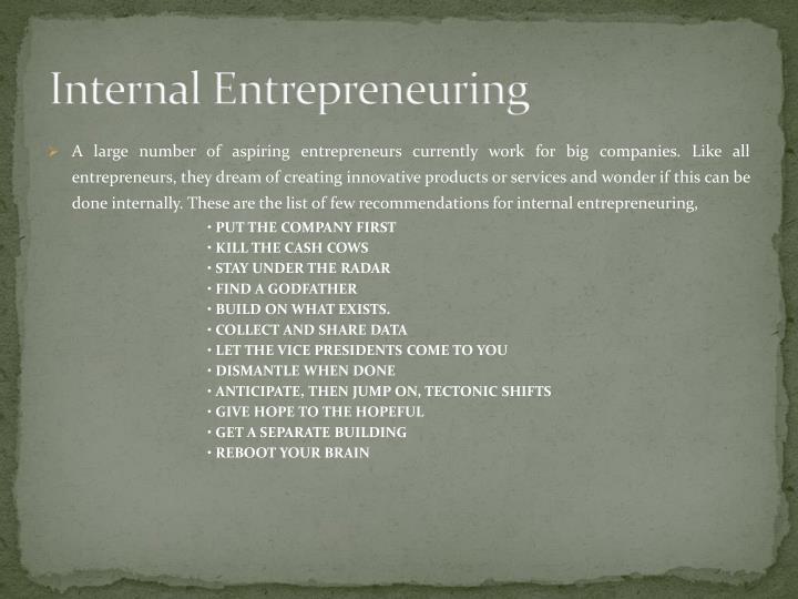 Internal Entrepreneuring