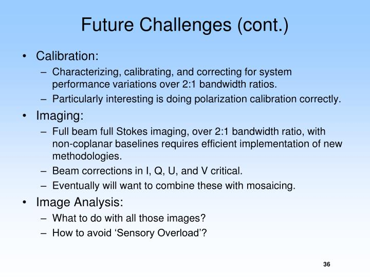 Future Challenges (cont.)
