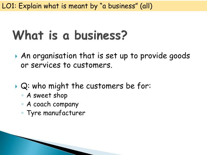 "LO1: Explain what is meant by ""a business"" (all)"