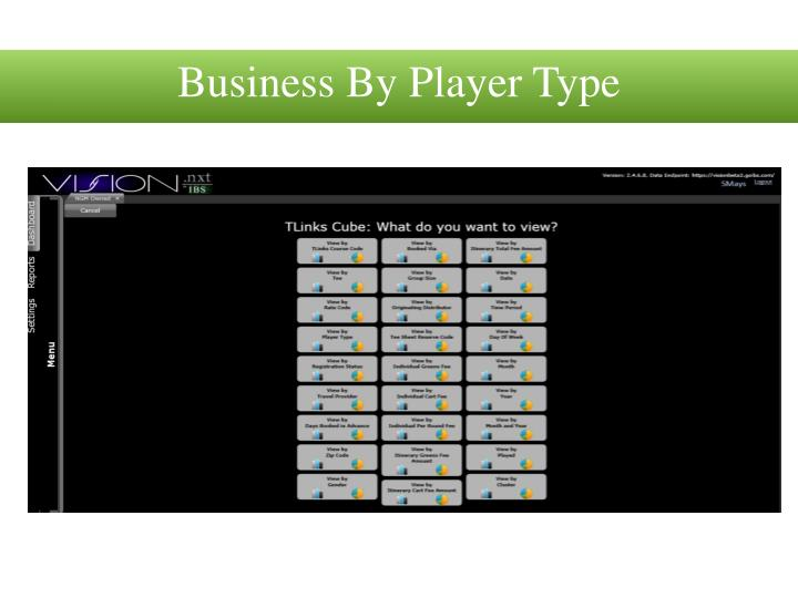 Business By Player Type