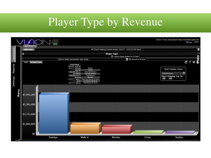 Player Type by Revenue