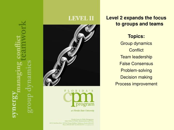 Level 2 expands the focus to groups and teams
