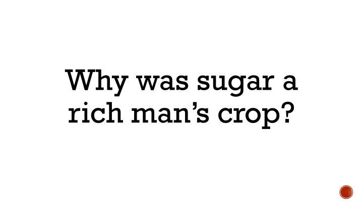 Why was sugar a rich man's crop?