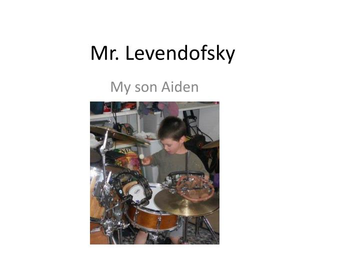Mr. Levendofsky