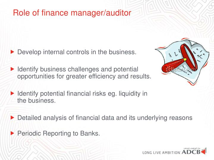 Role of finance manager/auditor