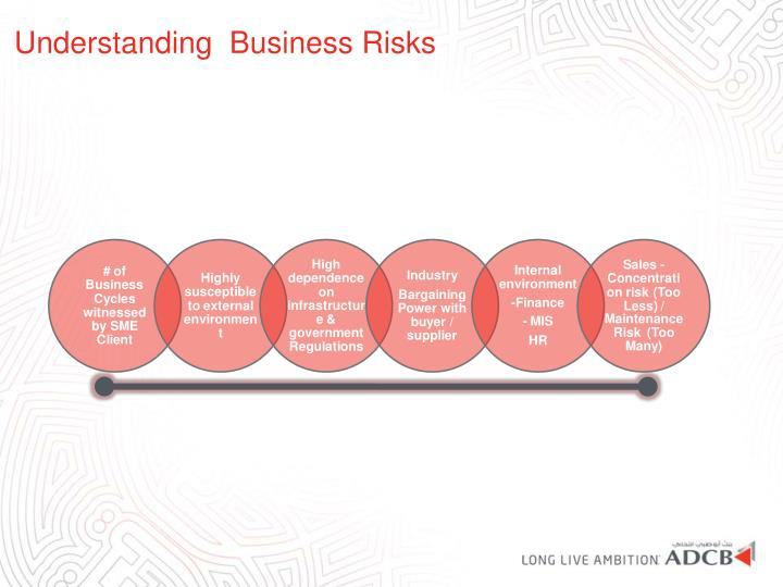 Understanding  Business Risks