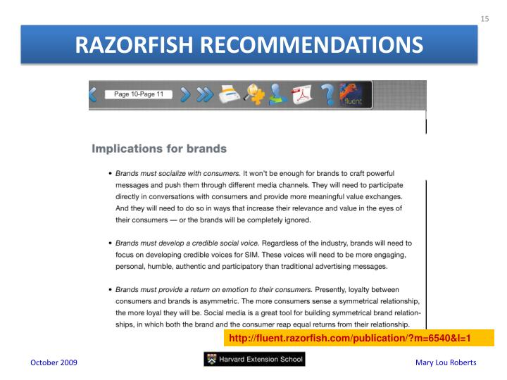 RAZORFISH RECOMMENDATIONS