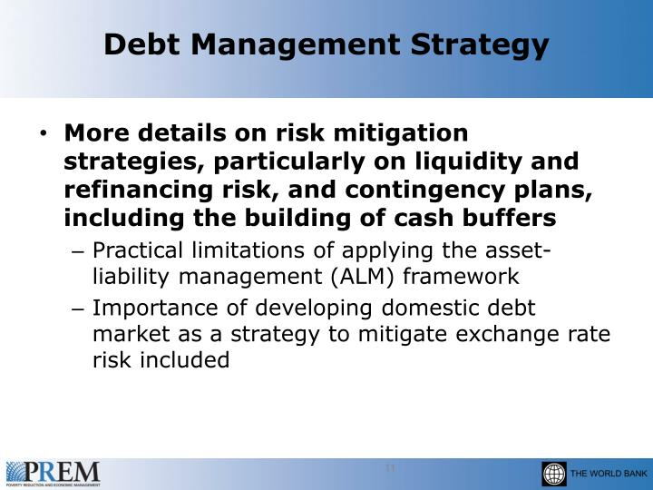 Debt Management Strategy