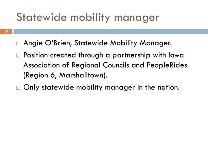 Statewide mobility manager