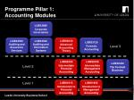 programme pillar 1 accounting modules