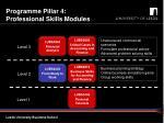 programme pillar 4 professional skills modules