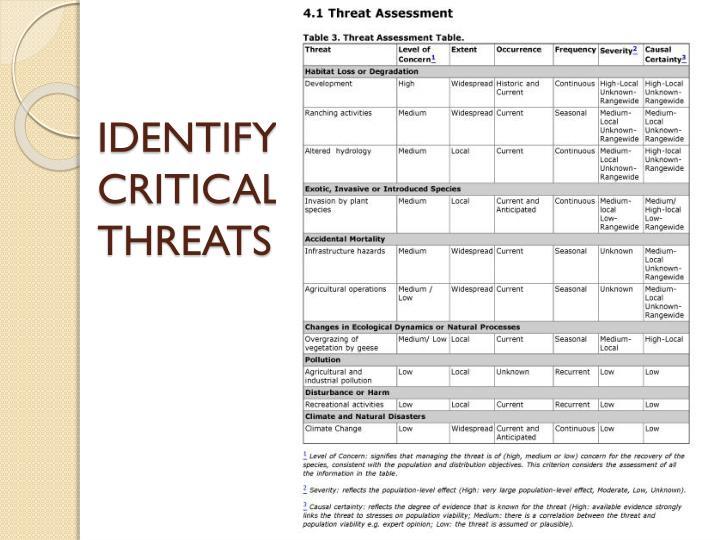 IDENTIFY CRITICAL THREATS