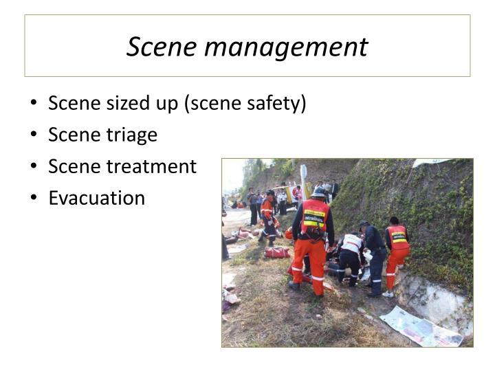 Scene management