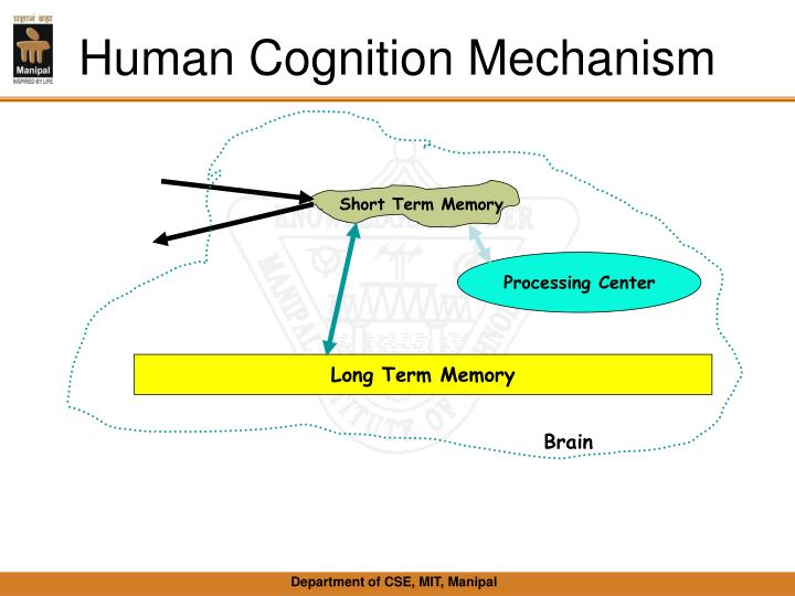 Human Cognition Mechanism