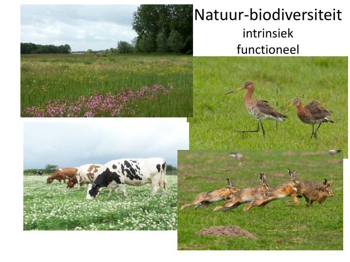 Natuur-biodiversiteit