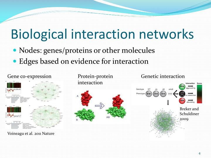 Biological interaction networks