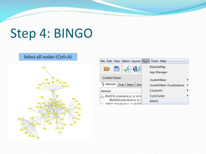 Step 4: BINGO