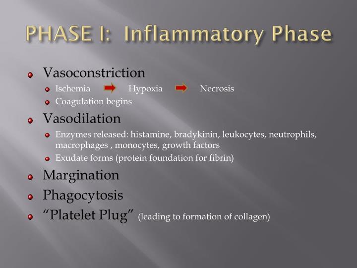 PHASE I:  Inflammatory Phase