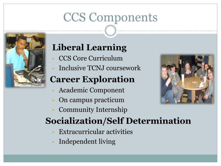 CCS Components
