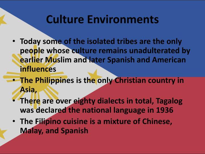 Culture Environments