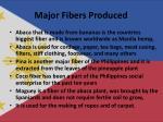 major fibers produced