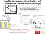 local at electrodes artificial biofilm self assembled ph sensitive peptide monolayer