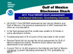 gulf of mexico blacknose shark