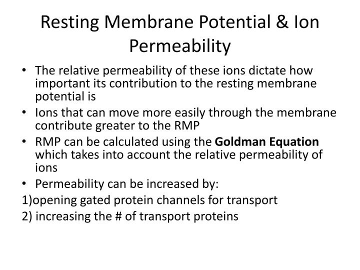 Resting Membrane Potential & Ion Permeability