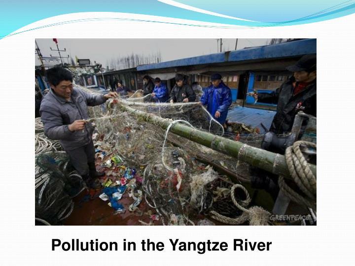Pollution in the Yangtze River
