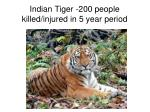 indian tiger 200 people killed injured in 5 year period