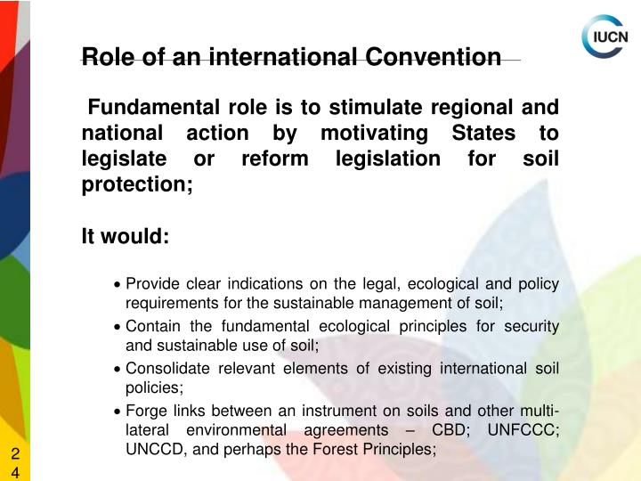 Fundamental role is to stimulate regional and national action