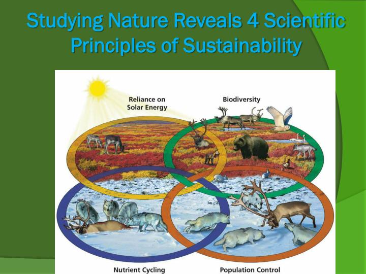 principles of nature These ways represent a fundamental aspect of the nature of science and reflect how  there are generally accepted ethical principles in the conduct of science.