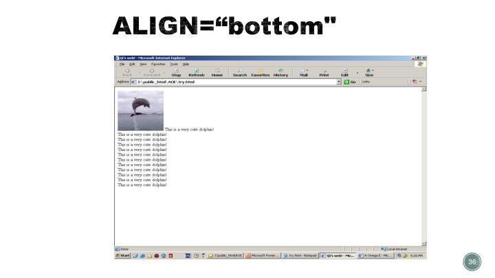 """ALIGN=""""bottom"""""""