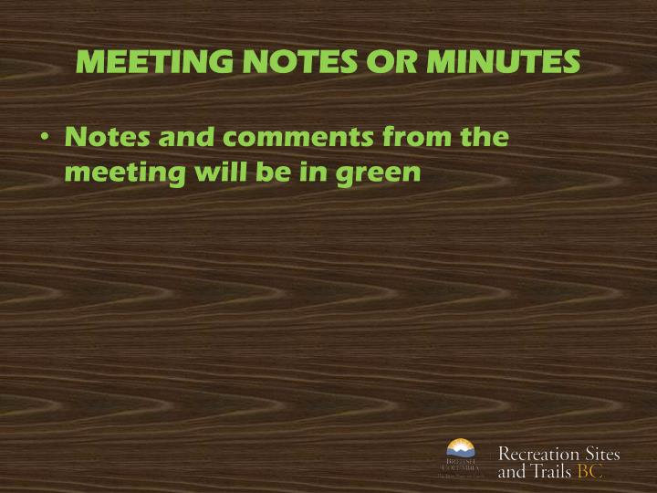 MEETING NOTES OR MINUTES