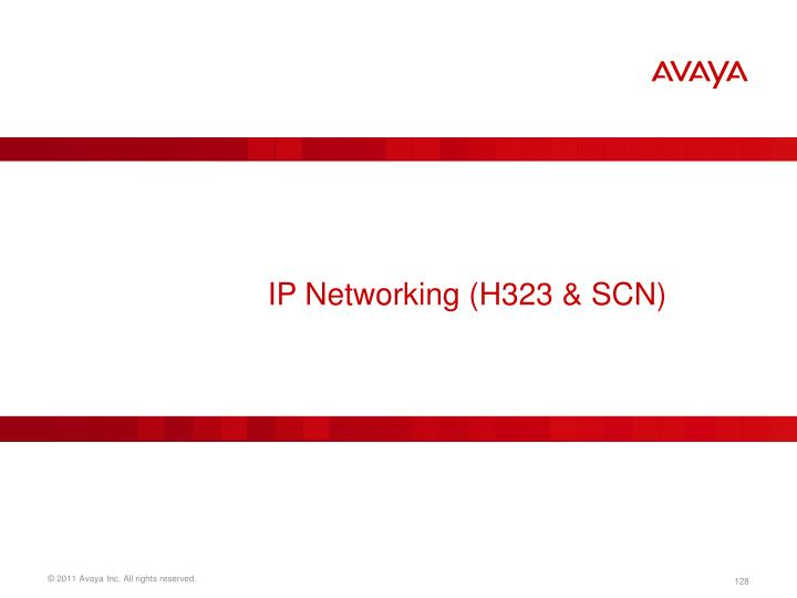 IP Networking (H323 & SCN)